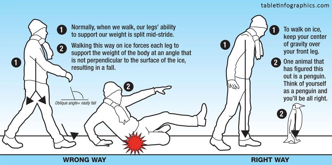 Walk Like a Penquin Infographic